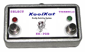 KoolKat's 2 Button Footswitch for Peavey Delta Blues